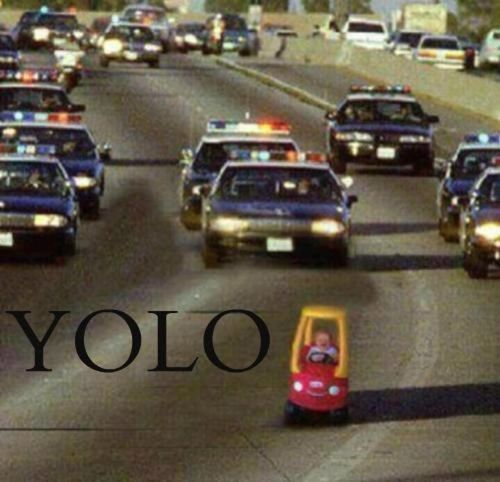 baby-yolo.jpg