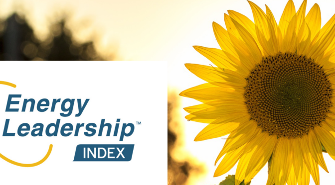 Take the Energy Leadership Index assessment.